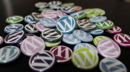 consultor WordPress