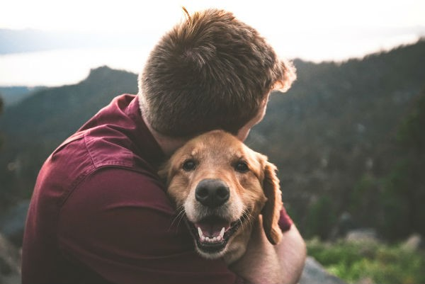 Importancia de las mascotas para el ser humano