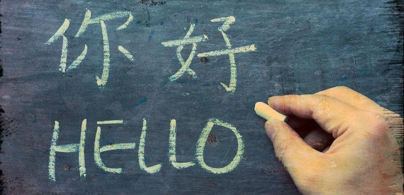 Como elegir a los mejores traductores