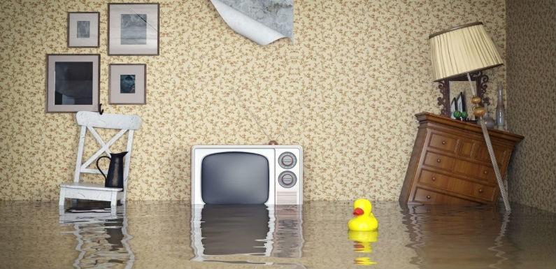 El agua puede causar daños irreparables